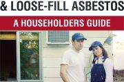 Estimates recommendations on loose-fill asbestos