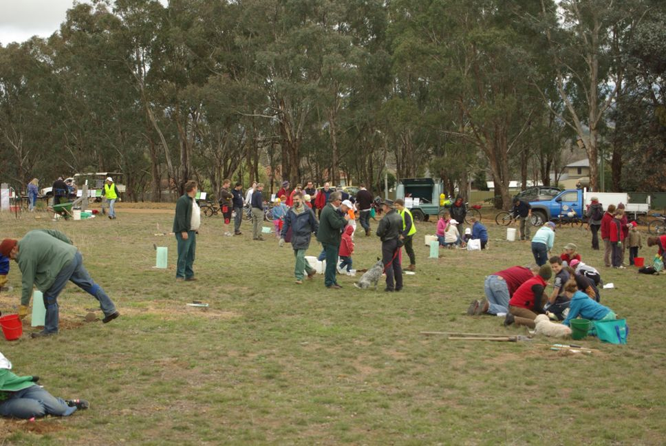 The National Tree Planting Day was very well attended