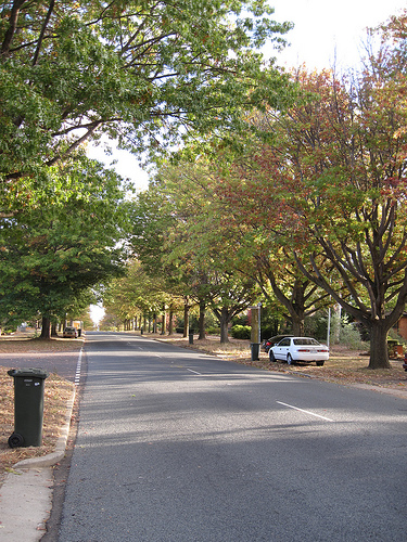 Canberra suburban street in early autumn. (Source: Climexus via Flickr)